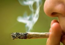Top 8 Effects does Marijuana have on the Brain