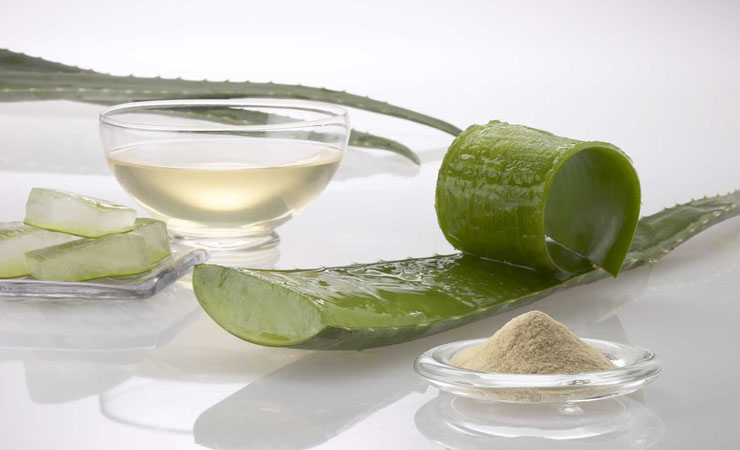 aloe-vera-homemade-remedy-to-dispose-of-dandruff
